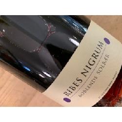 Cold Hand Winery Ribes Nigrum Boblende